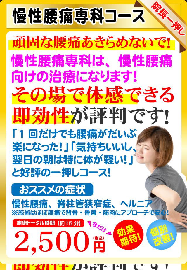 慢性腰痛専科コース